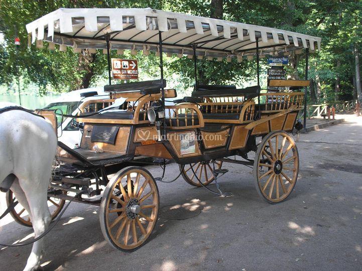 Picknikwagen (13 posti)