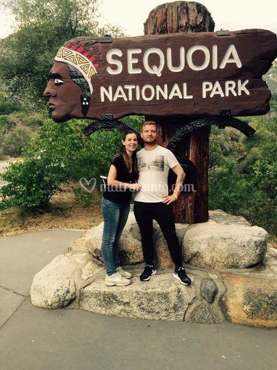 Silvia e Daniele, Sequoia Park