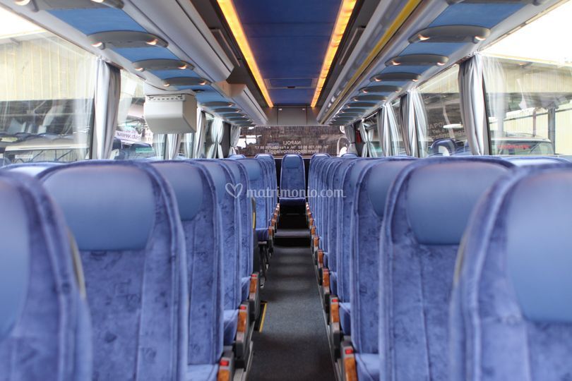 Interni Bus D'Agostino srl
