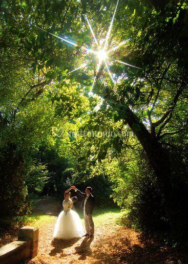 Matrimonio (princip)