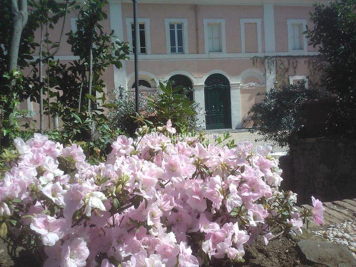 Casale della falcognana for Giardino fiorito