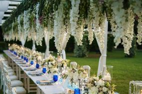 Alessandra Villelli Wedding & Events