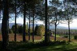Parco Villa Gallici Deciani di Villa Gallici Deciani