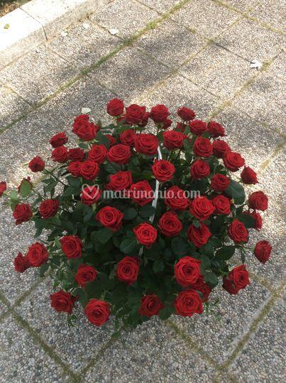 "72 rose per un ""SI"""