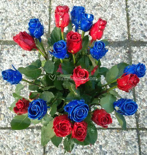 Ampia scelta di rose