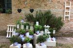 Tableau con erbe aromatiche