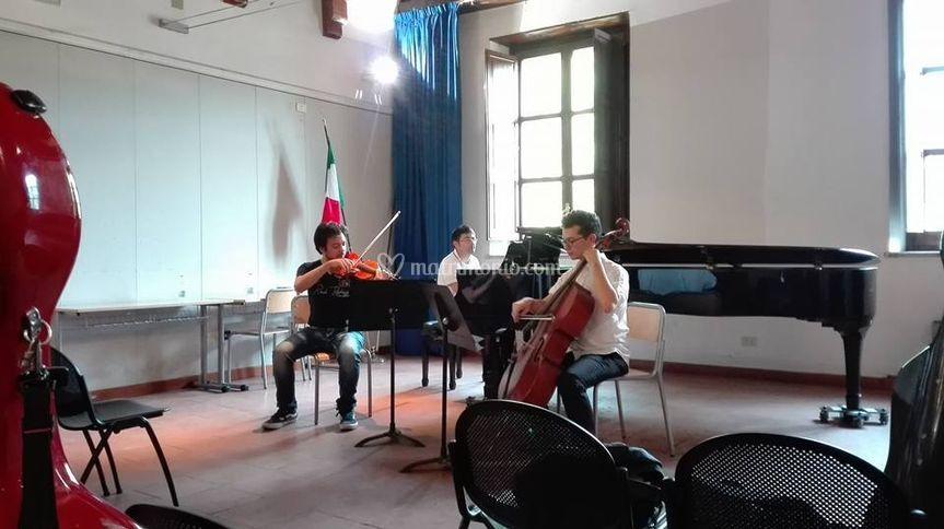 Cesare Vincelli Violinista