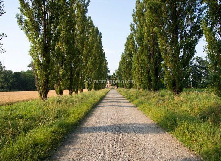Il viale di ingresso
