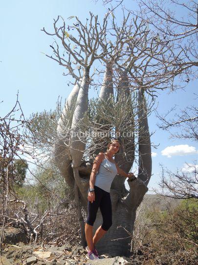 Madagascar federica e aless
