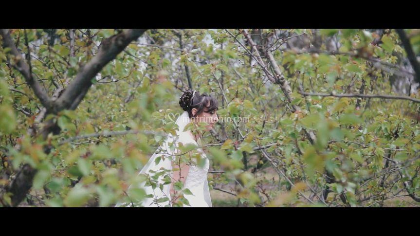 -the Bride-