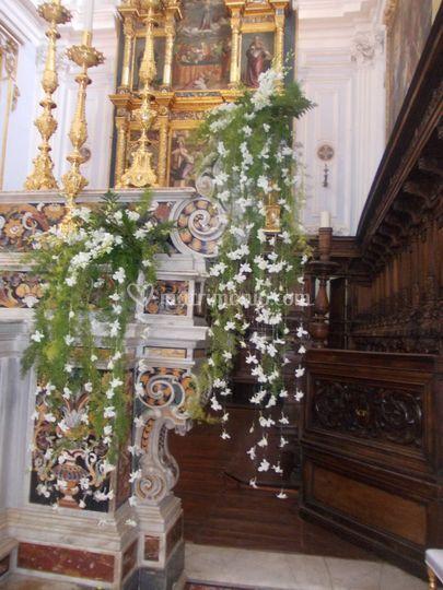 Orchidee pendenti