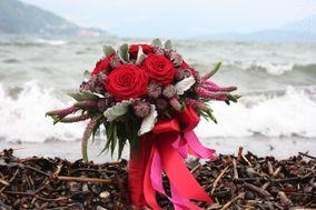 NG Flowers Armonie Floreali