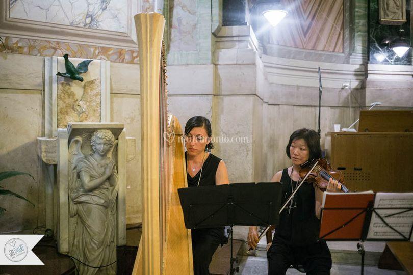 Arpa & Violino