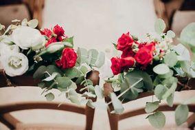 Fresia Flowers