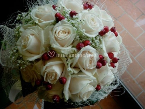 Rose bianche