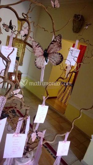 Tableau farfalle