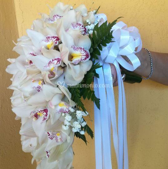 Una cascata di orchidee