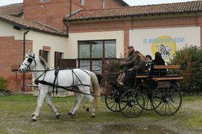 Agriturismo Il Borgo Riso