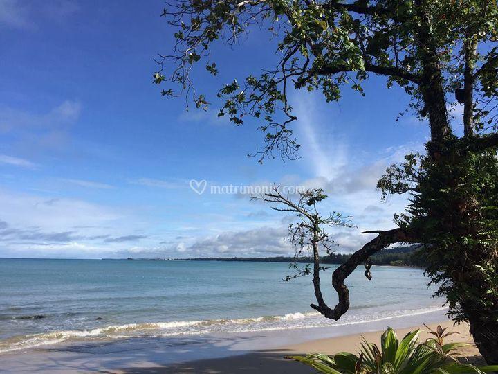 Thailandia un Paradiso