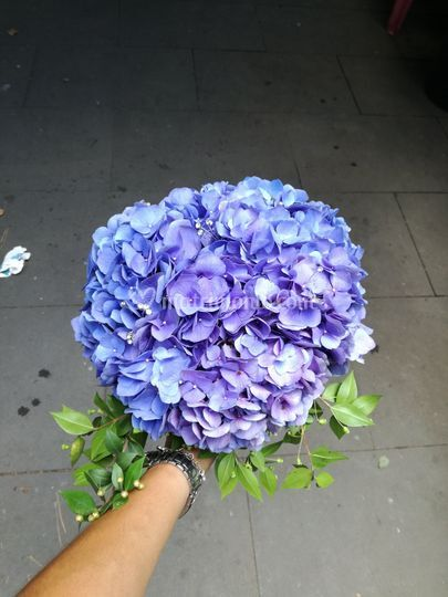 Ditelo con un fiore