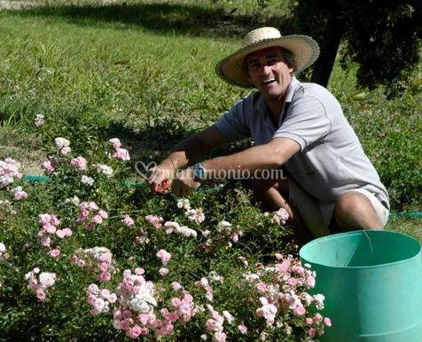 Il nostro giardiniere di ripabianca foto 3 for Giardiniere bologna