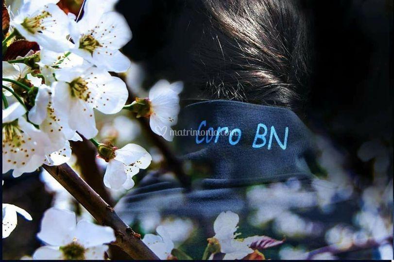 Coro Bn