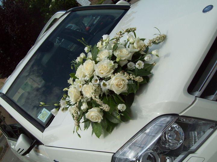 Auto a fiori