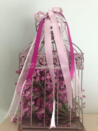 Gabbieta in rosa