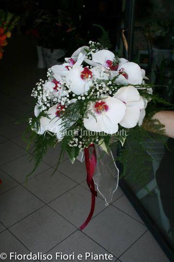 Bouquet con Phalenopsis