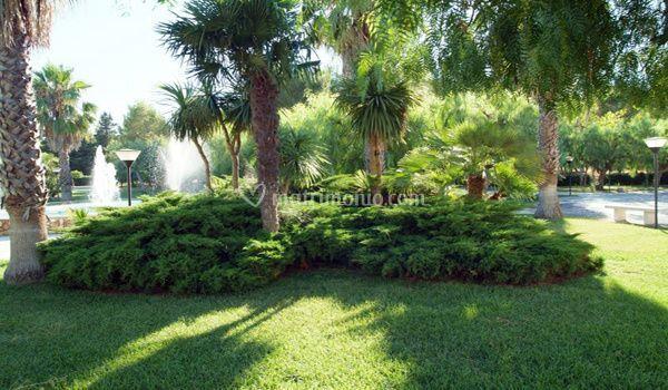 Hotel residence laurito - Residence il giardino bellaria ...