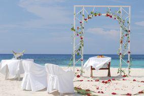 Stella Weddings
