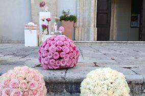 Angelina De Nigris Florist & Wedding Planner