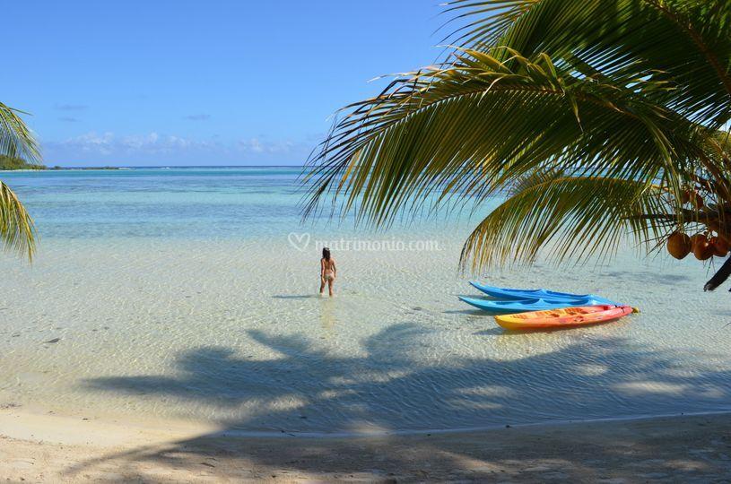 Moorea - Polinesia Francese