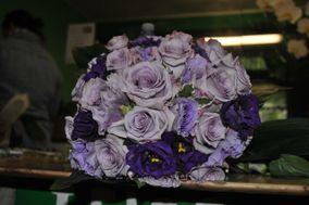 I fiori di Metanopoli