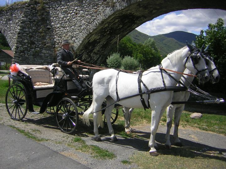 Carrozza con interni bianchi