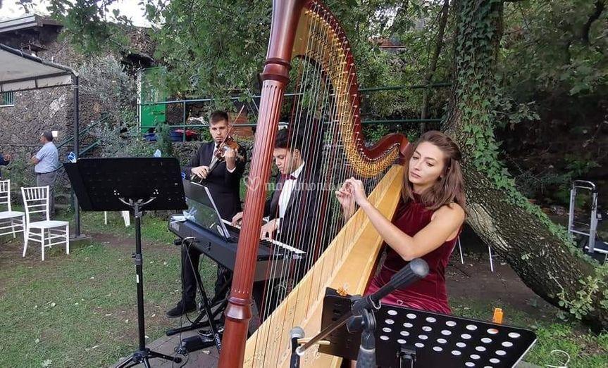 Magic Music Cerimonie Eventi