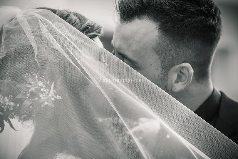 Bacio di Fotosintesi