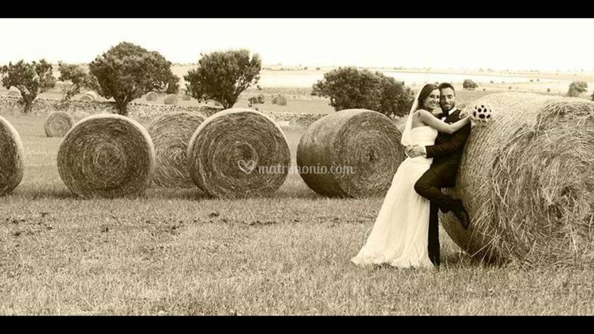 Nei campi di grano