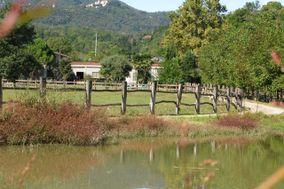 Agriturismo Azienda Agricola Nicolini