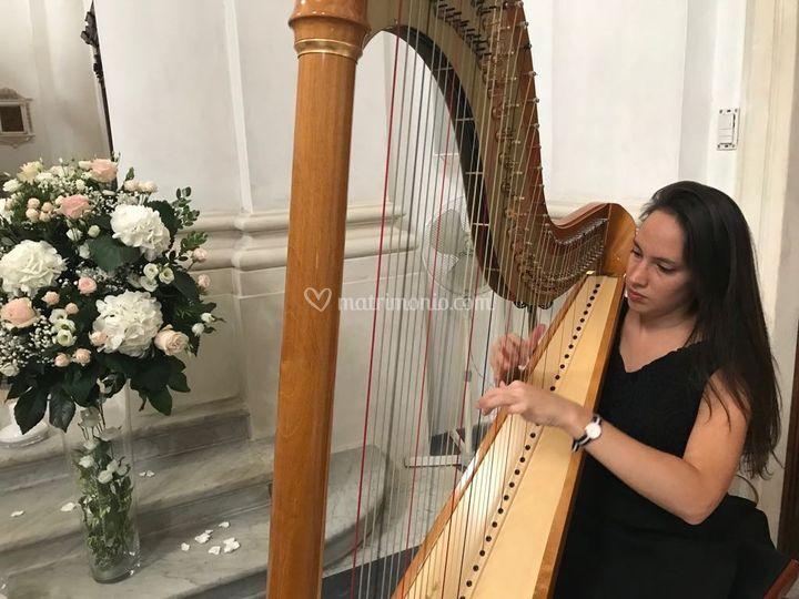 Ale & the golden harp