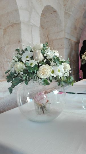 Daniela Colasanto Event & Wedding Planner
