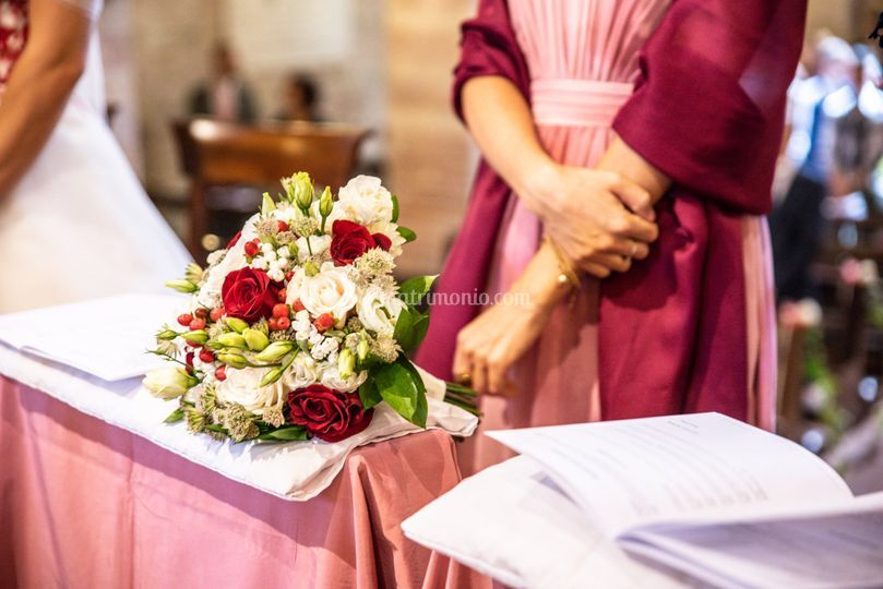 Tulipa Lab&Weddings