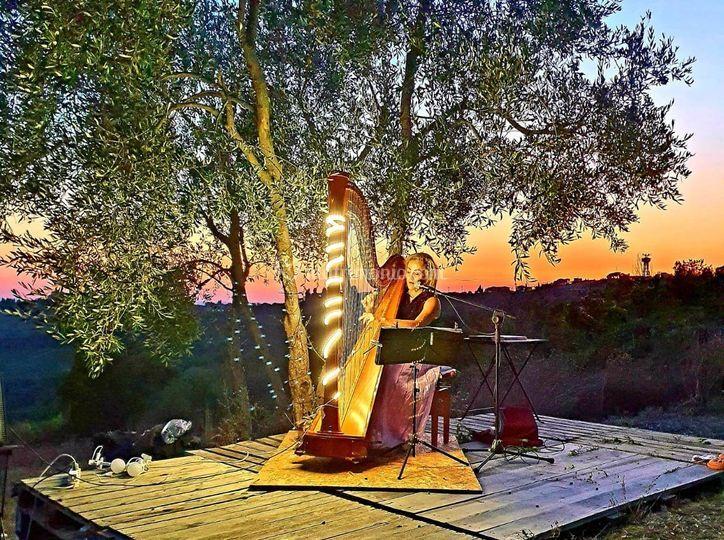 Antonella  Natangelo  Harpist