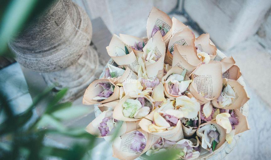 Coni di petali di fiori