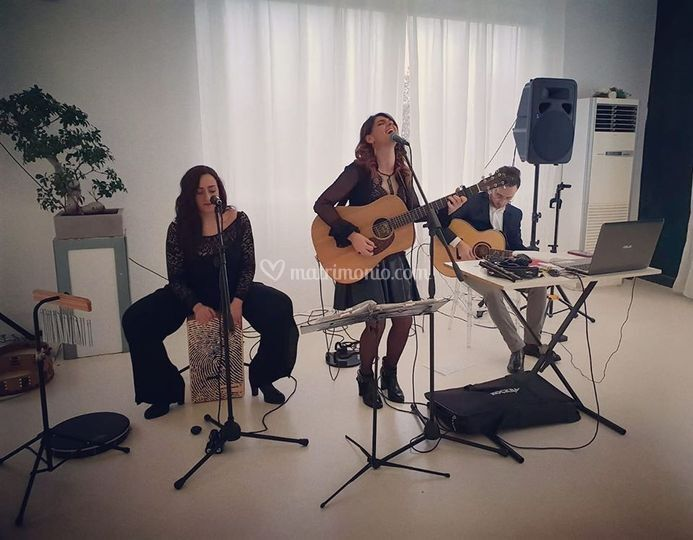 TC Musica Live
