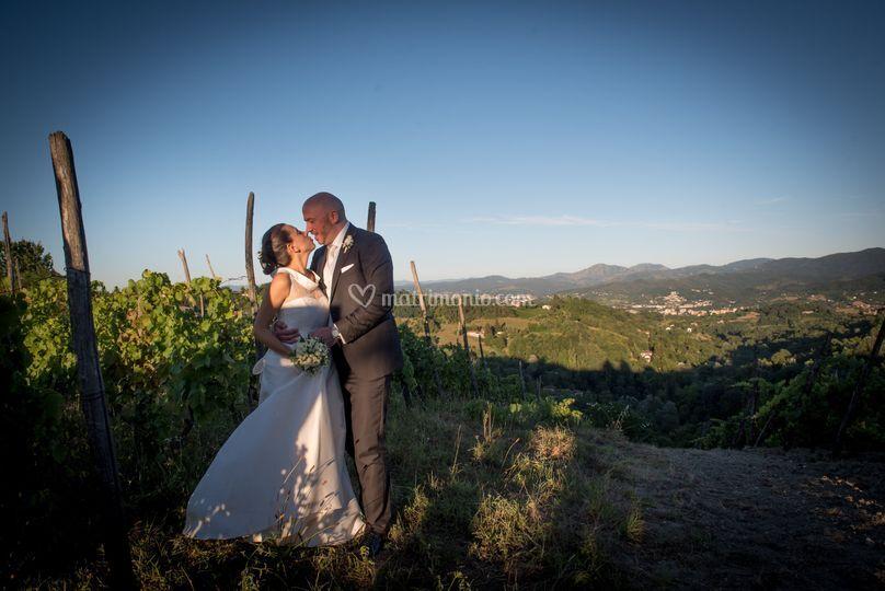 Alto Monferrato hills