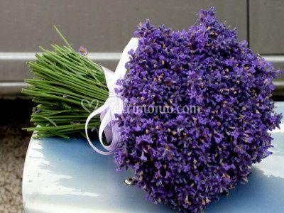 Bouquet si lavanda blu