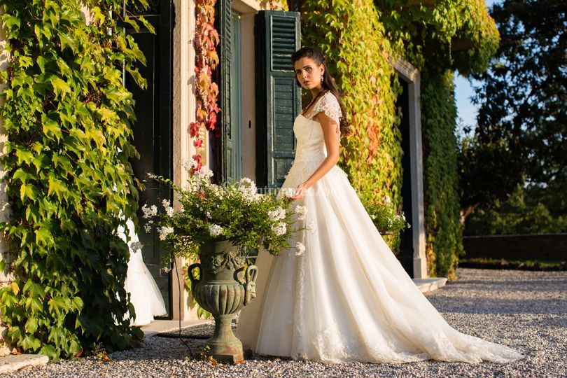 Rosy-Sposa
