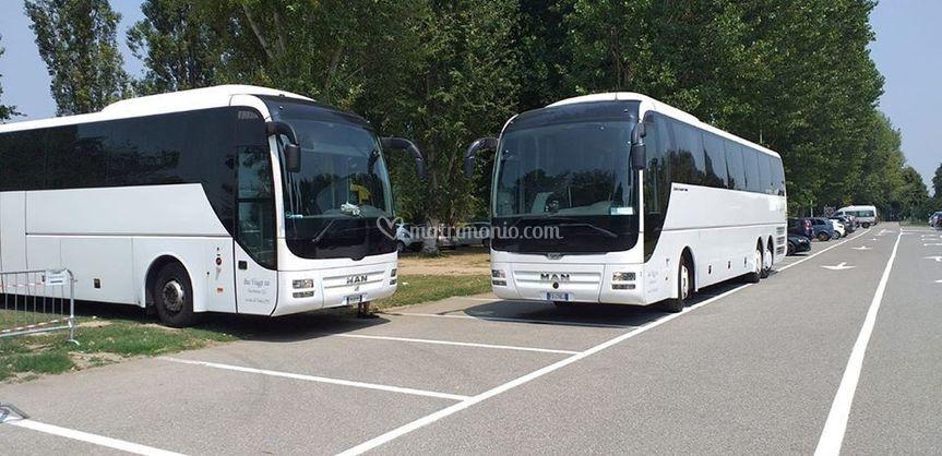 Bus Viaggi