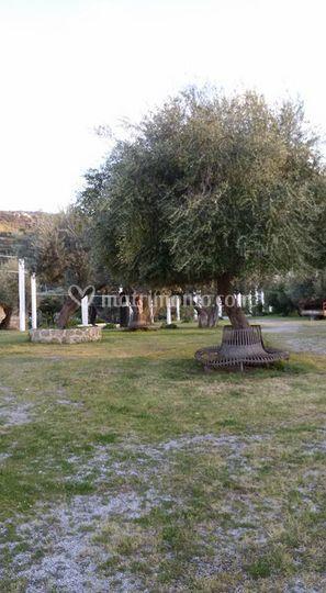 Residence torre dei quadaranini for Il giardino degli ulivi monteviale
